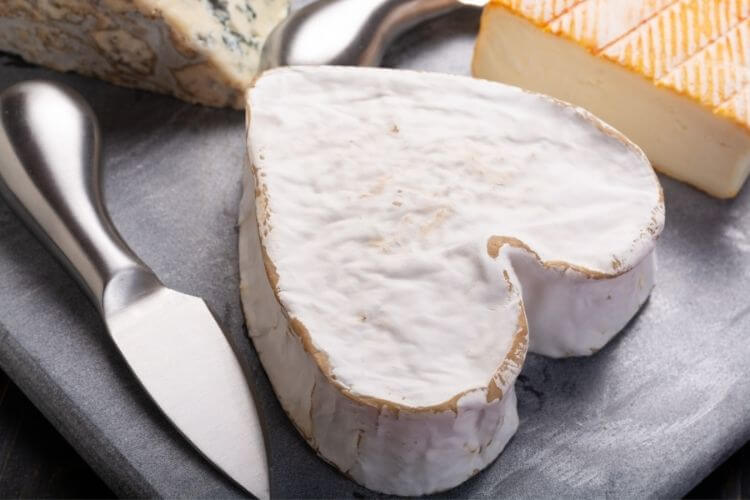 neufchatel cheese nutrition
